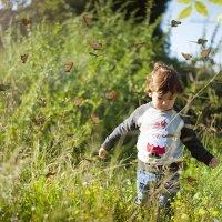 Бабочки :: Malka Morgan