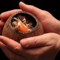 мир планеты в наших руках... :: Ирина