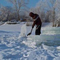 О фанатах зимнего купания. :: cfysx