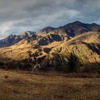 Altai :: Vadim Zharkov