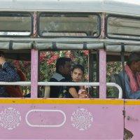 Мысли в розовом автобусе :: Татьяна Василюк