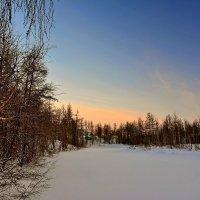 Прогулка по зимнему лесу :: Витас Бенета