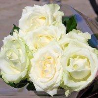 Поздравляю всех Тань,Танечек,Танюшек  с Татьяниным днем !!!! :: Валентина ツ ღ✿ღ