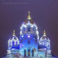 Новочеркасский Свято-Вознесенский кафедральный собор :: Елена Ермакова