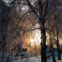 Мороз и солнце! :: °•●Елена●•° Аникина♀
