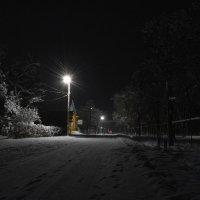Вечерняя прогулка :: Петр Заровнев