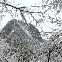 Гора Развалка :: Светлана Попова