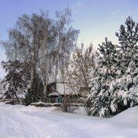 После снегопада :: Ольга П