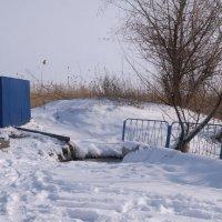 Родник зимой :: Сергей Махонин