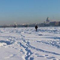 Прогулки по льду :: Вера Моисеева