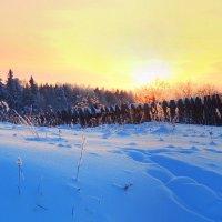 Просто наступила зима :: Павлова Татьяна Павлова