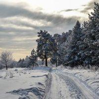 Зимний дес :: Дмитрий Денисов