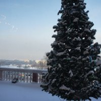 Вид из окна Михайловского (Инженерного) замка :: Елена Павлова (Смолова)