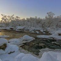 Зимняя протока... :: Серёга Некто