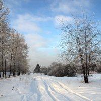 Простой зимний пейзаж :: Александр Попов