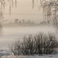 Туманно и холодно :: Александр Решетников
