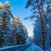 Зимняя дорога :: Михаил Бояркин