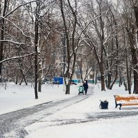 Московская зима :: Юрий Шувалов