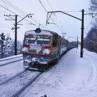 Экскурсия в Гадюкино зимой (2) :: Александр Резуненко