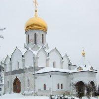 Собор Рождества Богородицы :: Лев Сергеев
