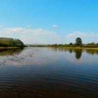 Забайкальская река Хилок. :: Елена Фалилеева-Диомидова