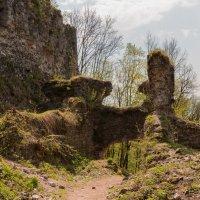 Руины замка_4 :: Владимир Л