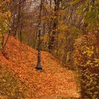 Киев.Осень. :: Стас