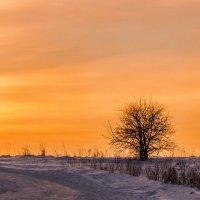 На закате :: Галина Шепелева