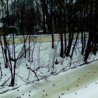 Уголок реки Монастырки у Александра-Невской Лавры. :: Светлана Калмыкова