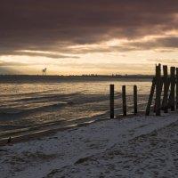 Зимнее утро на море :: Виталий Латышонок