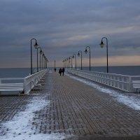Морозное утро :: Виталий Латышонок
