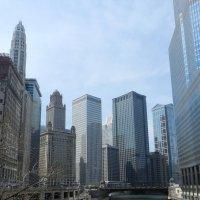 По зелёной реке Чикаго в г.Чикаго! :: Юрий Поляков