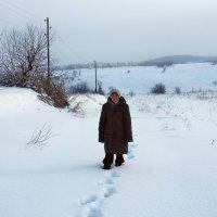 Экскурсия в Гадюкино зимой (5) :: Александр Резуненко