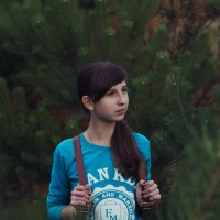 Прогулка по лесу :: Андрей Хистяев