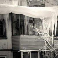 будни зимы :: Дмитрий Потапов
