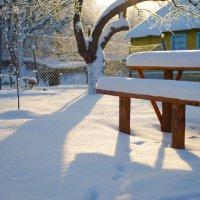 Мороз и солнце - день чудесный! :: Мария Кривошеина