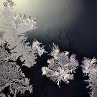 рисует мороз узоры на окне.. :: petyxov петухов