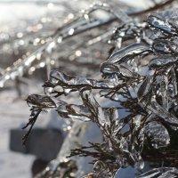 Зима :: Олег Плотников
