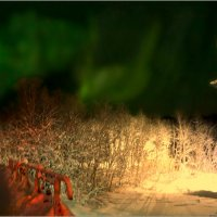 Aurora Borealis в Крещенскую ночь :: Кай-8 (Ярослав) Забелин