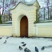 Зимний уголок Александра-Невской Лавры. :: Светлана Калмыкова