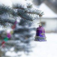 Снег :: Юлия Кузнецова