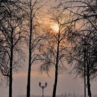 В зимнем городе :: Николай Белавин