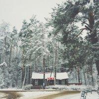 Зима... :: Ivan Gordov