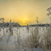 Югорский пейзаж с морозцем :: Георгий Кулаковский