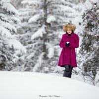 Зима... :: Мисак Каладжян