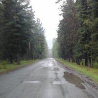 Путь ... :: Алексей Аксенов