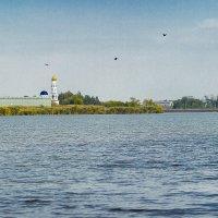 Кубань :: Елена Гвинашвили