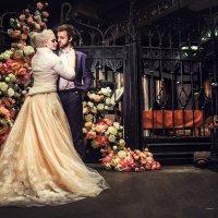 wed :: Виталий Пестов