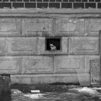 Потеплело. :: сергей лебедев