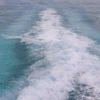 Хочу я снова побежать по морским дорожкам.... :: Tatiana Markova